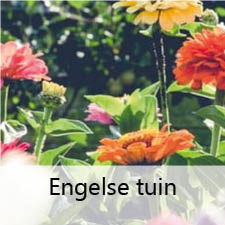 Engelse tuin H.W. Mollema